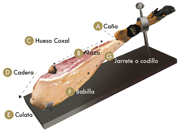 infografia jamon iberico